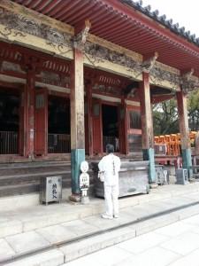 Temple 84 - hondo